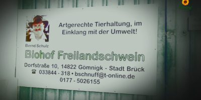 Backschwein_4